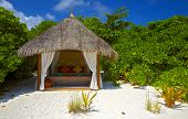Shelter For A Couple In Love