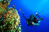 Underwater Photographer with digital SLR camera diving on a coral reef