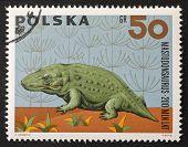 POLAND - CIRCA 1966: a stamp printed in Poland shows image of Mastodonsaurus, a Temnospondyl from the late Triassic. Poland, circa 1966