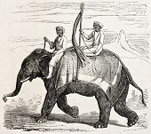 Old illustration of an elephant in Oude, antique Indian northern kingdom, By unidentified author,  published on L'Illustration Journal Universel, Paris, 1857