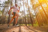 Running Man. Male Runner Jogging At The Park. Guy Training Outdoors. Exercising On Forest Path. Heal poster