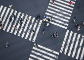 People Walking Cross Walk Street Traffic Sign Top View Social Business Area poster