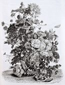 Flowers vase old illustration. Created by Von-Huysum, published on Magasin Pittoresque, Paris, 1844