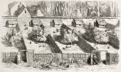 Hen houses old illustration. Created by Lavieille, published on L'Illustration, Journal Universel, Paris, 1858