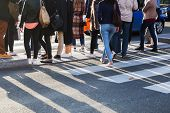 Crowd Of People Crossing A Street At The Pedestrian Crossing poster