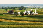 stock photo of farm land  - An amish farm land in Pennsylvania with farms in background - JPG
