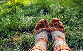 Feet In Warm Woolen Socks. Knitted Wool Socks. Feet In Socks On The Background Of Green Grass. Autum poster