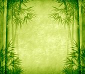 picture of bamboo leaves  - design of chinese bamboo trees with texture of handmade paper - JPG