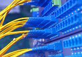 fiber Network Server