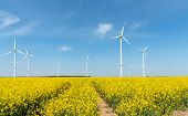 Blooming Rapeseed Field With Wind Turbines In The Back Seen In Germany poster