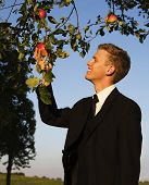 Young Man Sampling Apple