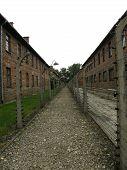 Auschwitz - Under Power Enclosure
