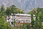 Mcleod Ganj, Dharamsala, Himachal Pradesh, India.