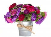 bouquet of aster flowers in vase