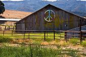 Multi-Colored Peace Sign On Side Of Barn