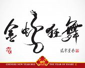 Vector Snake Calligraphy, Chinese New Year 2013 Translation: Golden Snake Dancing and Celebrating th