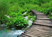 Wooden Path And Waterfall In Plitvice National Park