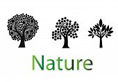 Nature Trees Logo