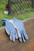 Garden Gloves On Bench