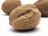 Greek Nut