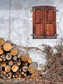 Woodpile And Cottage