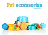 Pet accessories isolated on white