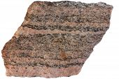 Banded Metamorphic Rock Gneiss From Karelia