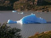 Lago Grey Iceberg