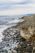 Magellanic Coast