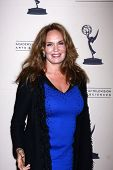 LOS ANGELES - JUN 13:  Catherine Bach arrives at the Daytime Emmy Nominees Reception presented by ATAS at the Montage Beverly Hills on June 13, 2013 in Beverly Hills, CA