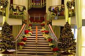 foto of cruise ship  - A nicely decorated ship or hotel lobby with Christmas trees and plants - JPG