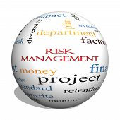 Risk Management 3D Sphere Word Cloud Concept