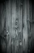 Monochrome Knotted Wood Background