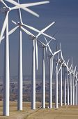 group of aligned windmills
