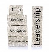 Leadership building blocks isolated on white