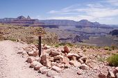 View From Skeleton Point In The Grand Canyon
