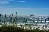 foto of sea oats  - a shrimp boat fishing along the coast of North Carolina in glistening blue water