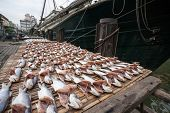 Dried sea fish on the pier in the port of Macao. China.