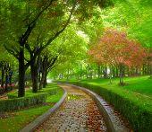 Parque de la ciudad verde