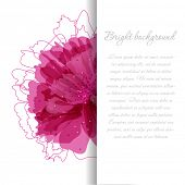 Floral background with watercolor pink flowers and banner for your text