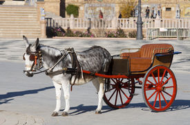 stock photo of hackney  - donkey and  tourist coach for children in Seville - JPG