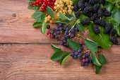 stock photo of mulberry  - Berries on Wooden Background. Summer currant and mulberry. Agriculture Gardening Harvest Concept