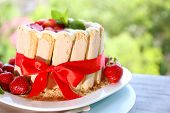 Tasty cake Charlotte with fresh strawberries on green nature background