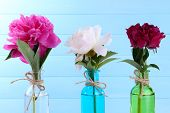 Beautiful peony flowers in glass vases, on color wooden background