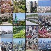 picture of ward  - Photo collage from Tokyo Japan - JPG