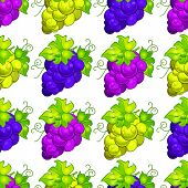 Cluster Grapes Seamless Pattern