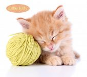 Cute little red kitten and ball of thread isolated on white