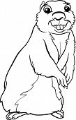 Gopher Animal Cartoon Coloring Page