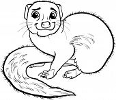 Mongoose Animal Cartoon Coloring Book