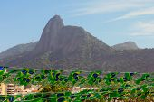 Brazilian Flags With View Of Corcovado Christ the Redeemer, Rio De Janeiro